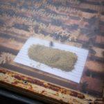 Pollen boost