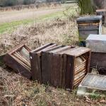 Abandoned hives