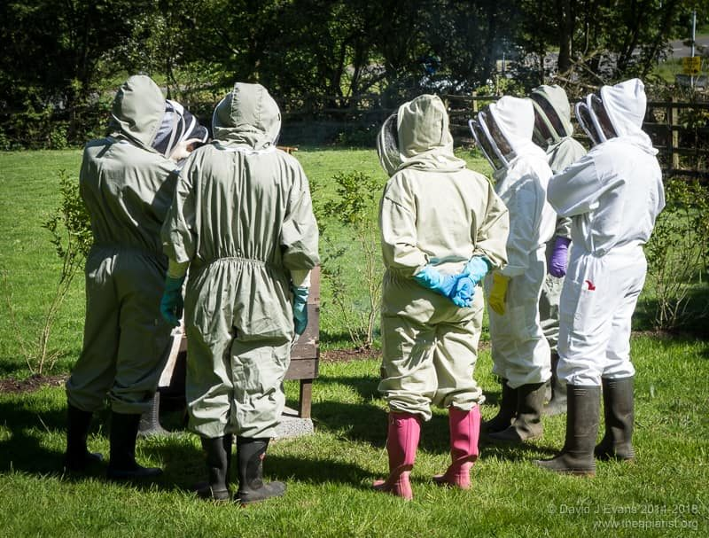 Trainee beekeepers