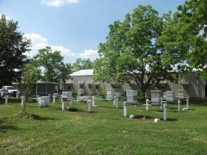 Baton Rouge apiary