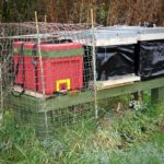 Polyhives and polythene