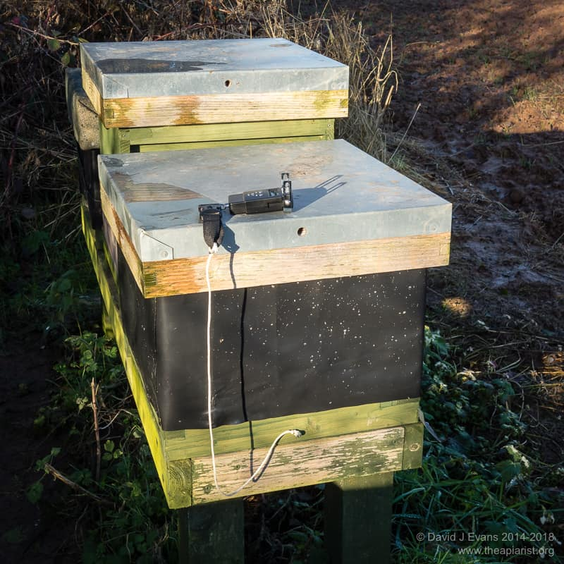 Weighing a hive ...