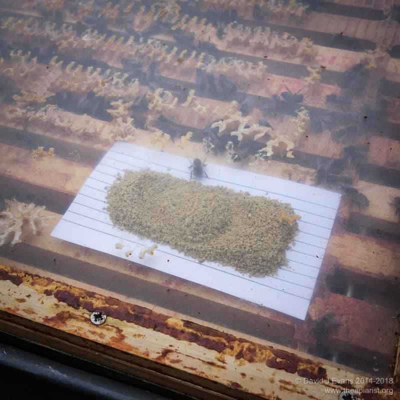 Pollen boost ...