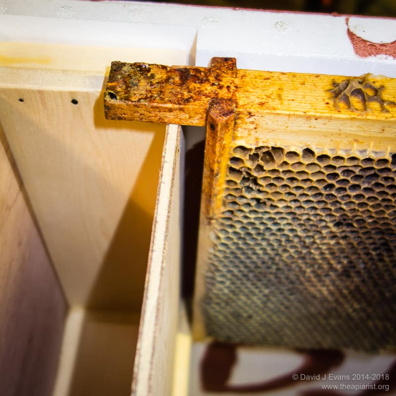 Feeder end beespace