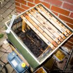 Steam wax extractor ...