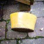 Wax block and propolis ...
