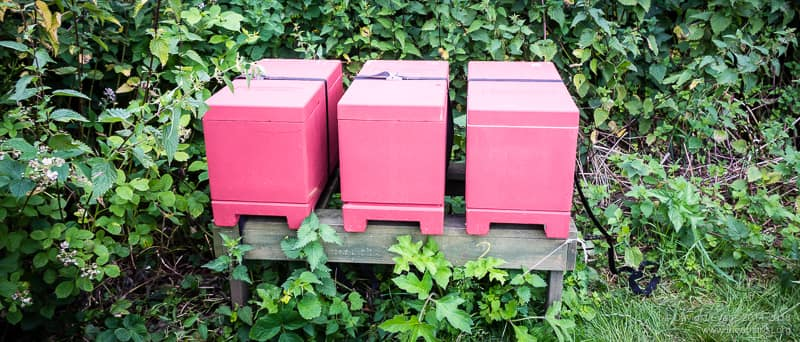 Three poly nucs all in a row