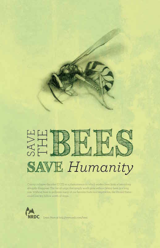 Save the bees ...