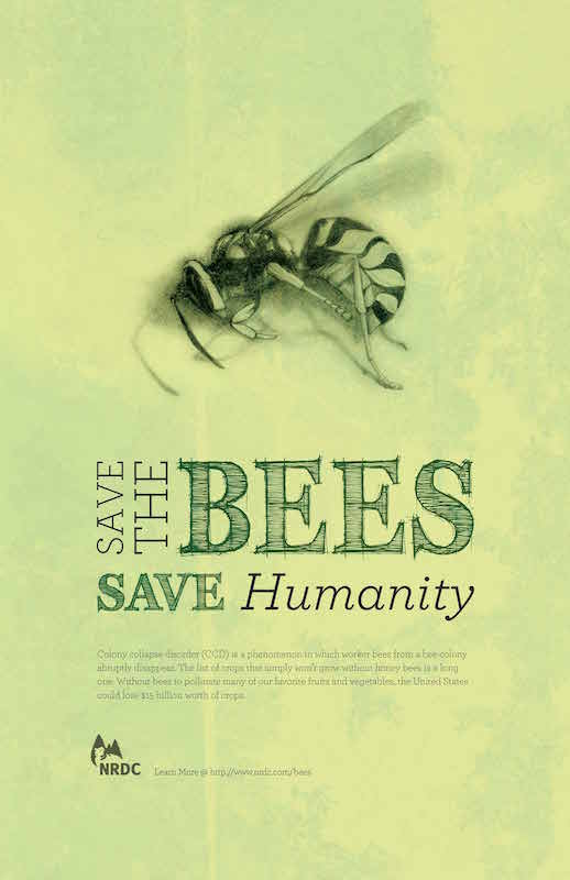 Save the bees, save humanity