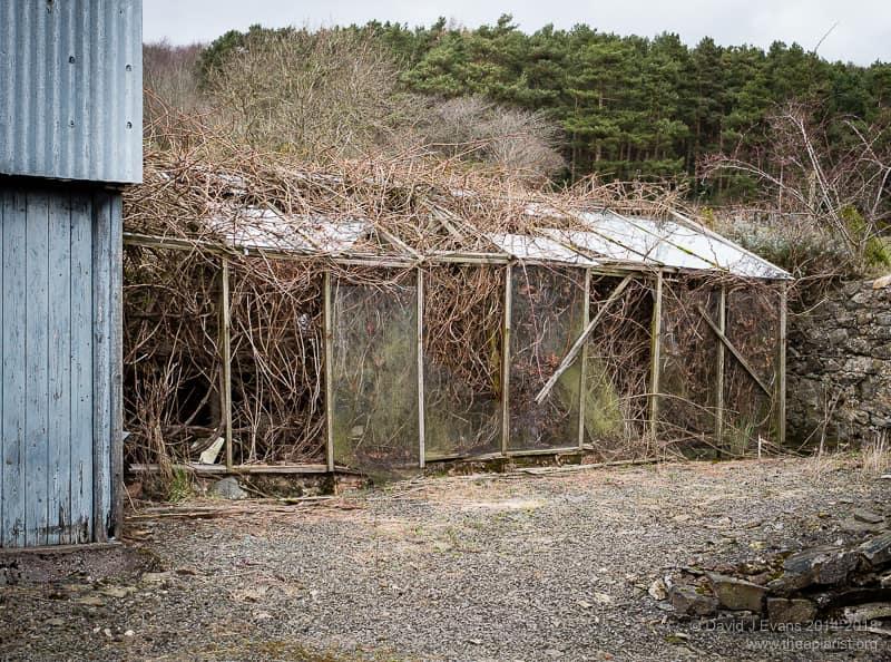Triffid greenhouse