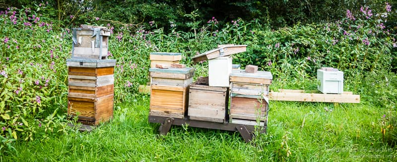 Gaffer tape apiary