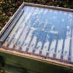 Perspex crownboard