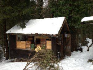 Calum's bee house