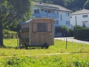 Bee caravan