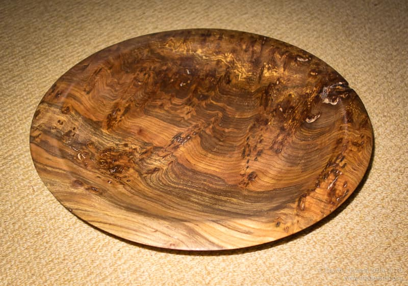 Elm bowl ...