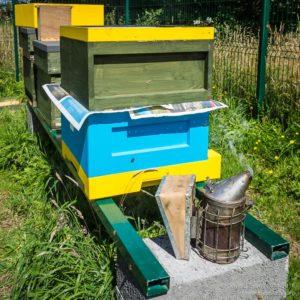 An Abelo/Swienty hybrid hive ...