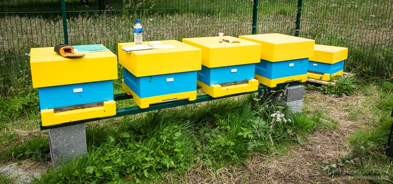 Abelo poly National hives ...