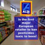 Supermarket bees