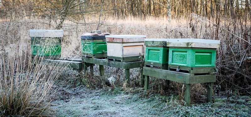 The apiary in winter ...