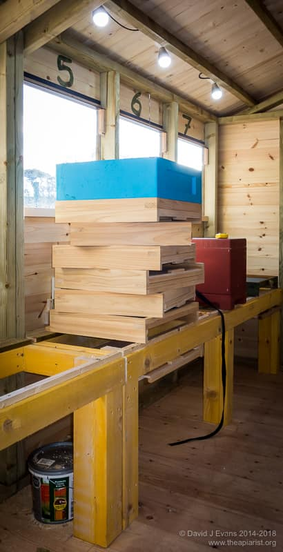 Bee shed hive stand headroom