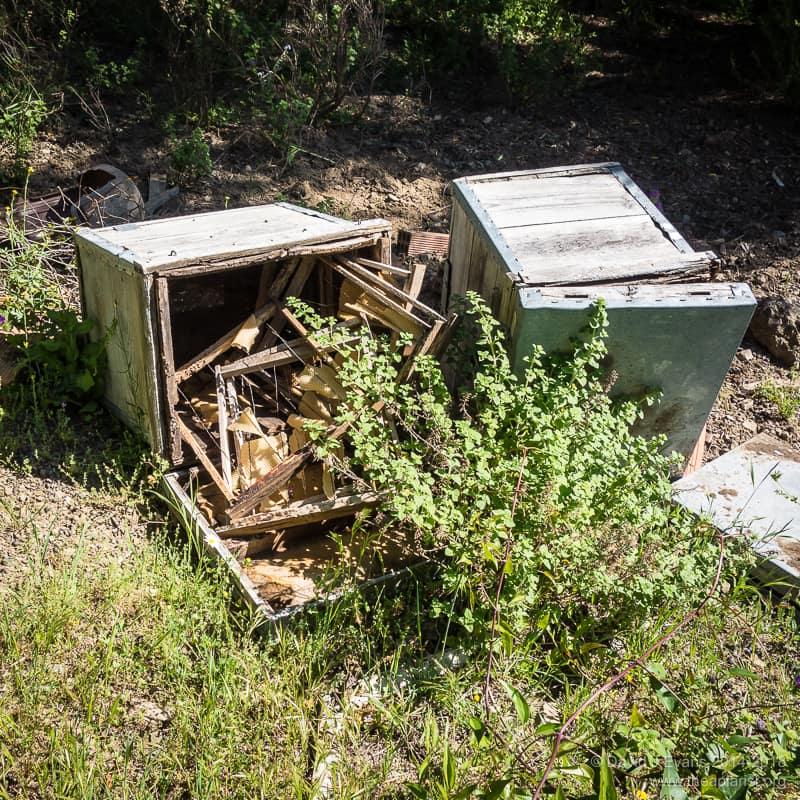 Ransacked Layens hive ...