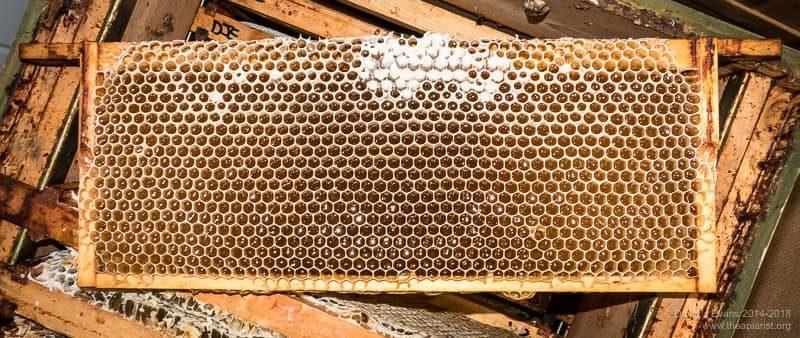 (Very) partially capped honey super frame ...