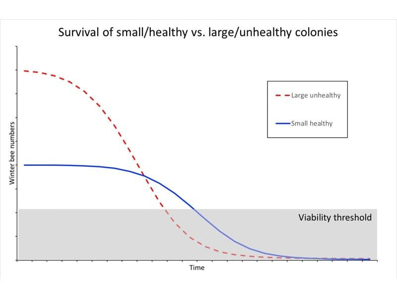 Strong unhealthy colonies might survive less well than weak healthy colonies.