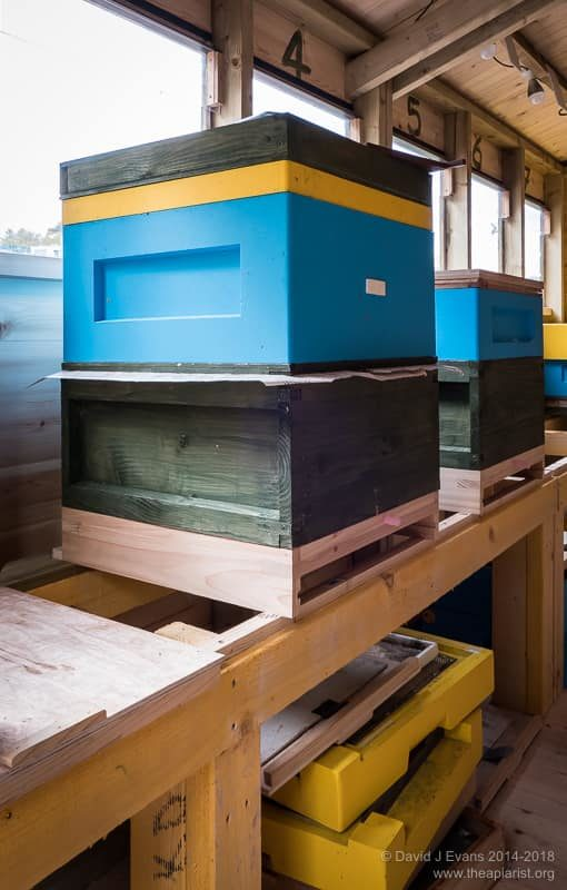Bee shed hive stands