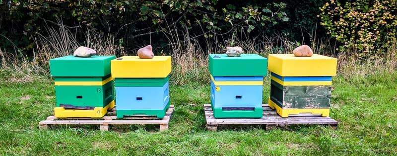 Abelo poly hives
