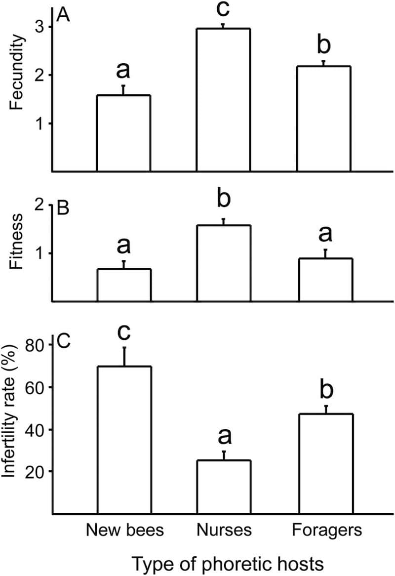 Mite fecundity and fitness