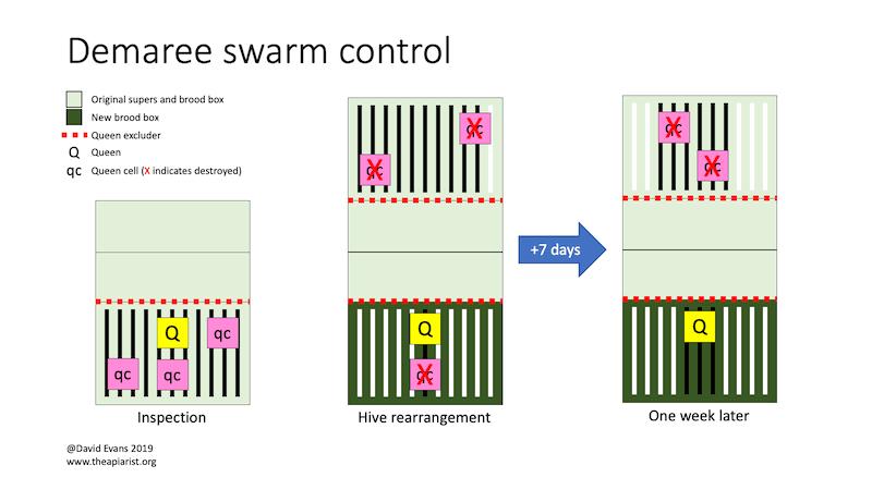 Demaree swarm control